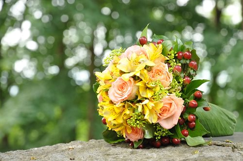 Chocolate Rust and Mustard fall wedding colors