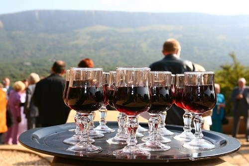 Arrange for a round of wine tasting