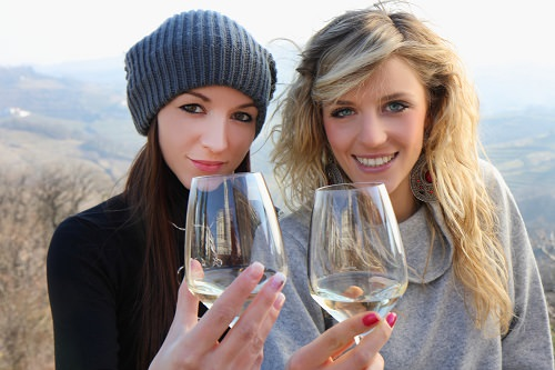 Take a wine tasting tour