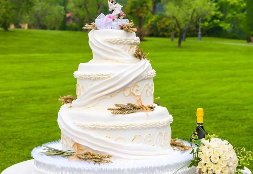 The floral nature cake